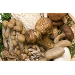 French Dried Forest Mushroom Mix. 50gm.