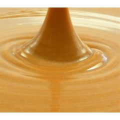 Equagold Hazelnut Paste 200gm. Nocciola